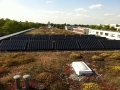 Wedler Berlin Photovoltaik Sunpower 2011